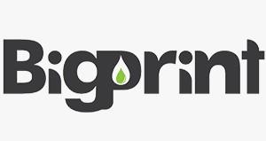 BigPrint-Logo